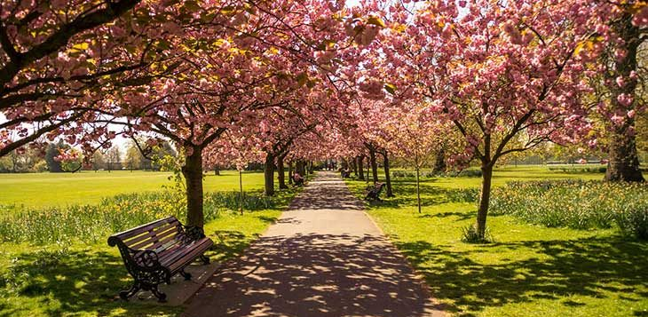 Гайд-Парк в Лондоне: фото парка, история, как можно добраться